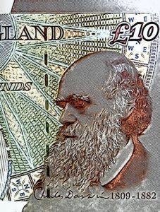 Charles Darwin Money UK