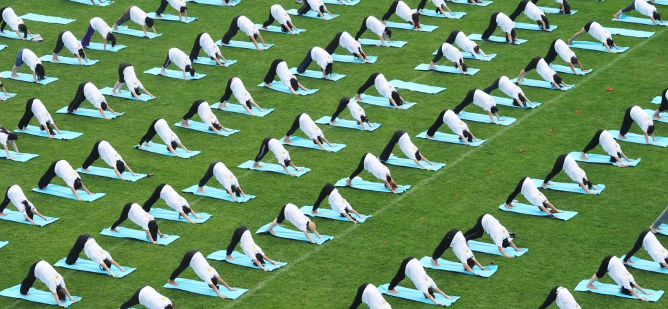 yoga-on-green-park